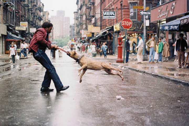 Jamel_Shabazz_Man_and_Dog_The_Lower_East_Side_NY_1980_Chromogenic_print_Edition_of_9_plus_2_AP_609_x_762_cm_24_x_30_in.-c2951ad1.jpg